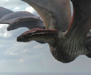 dragons and game of thrones image