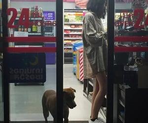 girl, dog, and aesthetic image