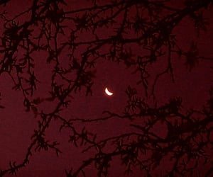 dark, red, and moon image