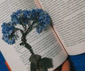 flores, leer, and cuarentena image
