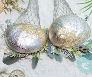 pearls, shells, and pearlescent image