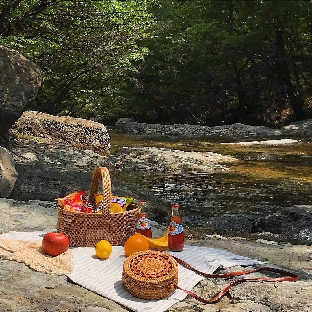 aesthetic, picnic, and fruit image