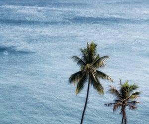 ocean, summer, and sea image