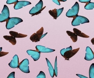 aesthetic, blue, and butterflies image