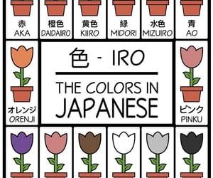education, japan, and japanese image