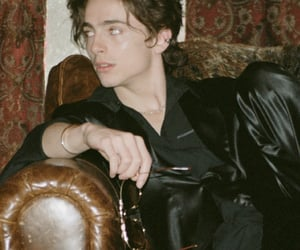 timothee chalamet, timothee, and handsome image