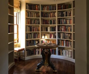 aesthetic, bibliophile, and books image