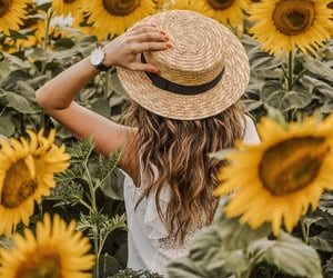 girl, photography, and sunflower image