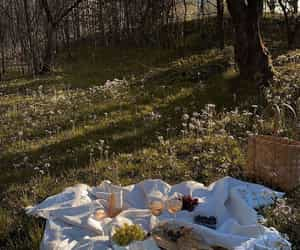 picnic, aesthetic, and flowers image