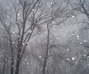 dark and snow image