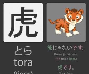 language, education, and japan image