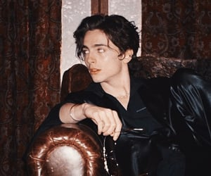 timothee chalamet, timothee, and little women image