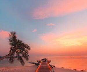 beach, sunset, and travel image