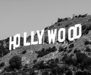 hollywood and photography image