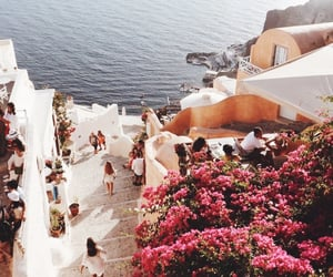 travel, beach, and flowers image