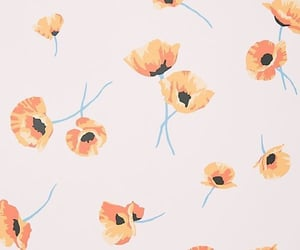 flowers, wallpaper, and poppy image