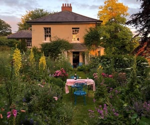 garden, flowers, and house image