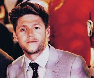 1d, niall horan, and nialler image
