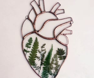 heart, leaves, and nature image