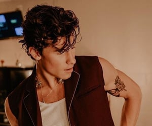 shawn mendes, boy, and tattoo image
