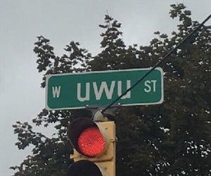 uwü, aesthetic, and alternative image