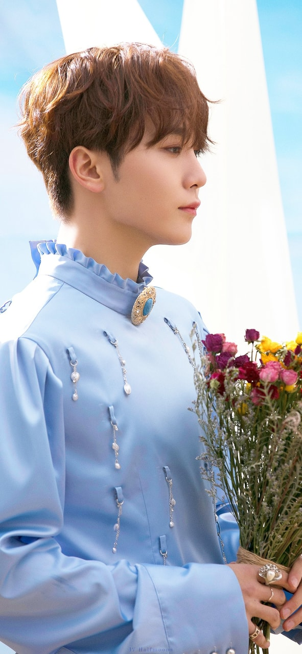Seungkwan Fallin Flower Wallpaper Discovered By Tbug