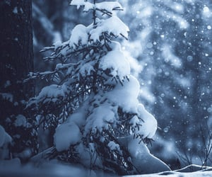snow, snowing, and snowy image