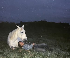 boy, guy, and horse image