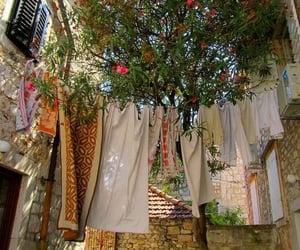italy, clothes, and flowers image