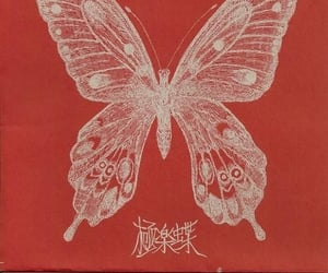 butterfly, aesthetic, and red image