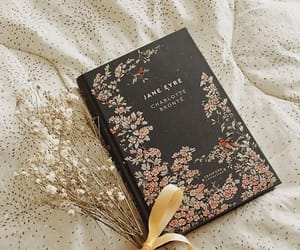 bibliophile, book cover, and books image