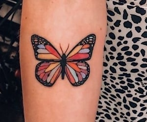 arm tattoo, discover, and butterfly image