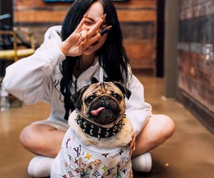 billie eilish and dog image