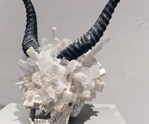 aesthetic, horns, and skull image