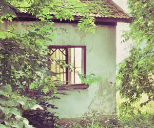 cottage, fairytale, and green image