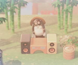 animal crossing, natural, and raccoon image