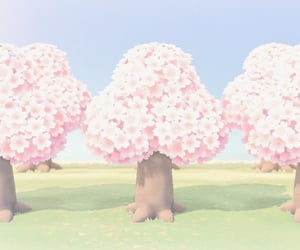animal crossing, cherry blossoms, and nature image