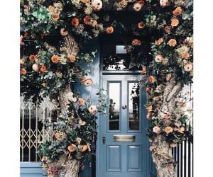 blue, door, and flowers image