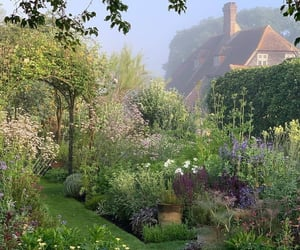 garden, green, and home image
