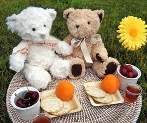 bear, cottage, and picnic image