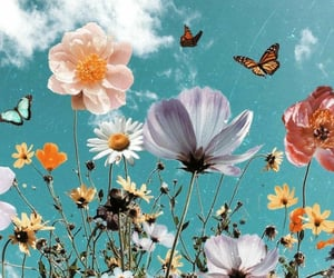 flowers, wallpaper, and butterfly image