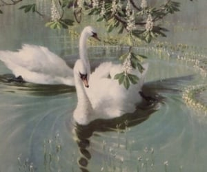 Swan, aesthetic, and vintage image
