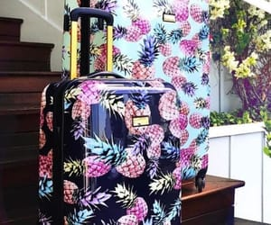 accessories, ananas, and suitcases image