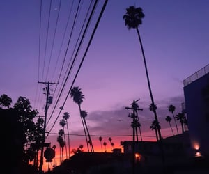 california, fire, and palmtrees image