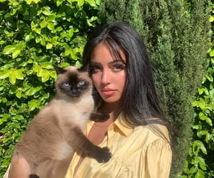 cindy kimberly, girl, and cat image