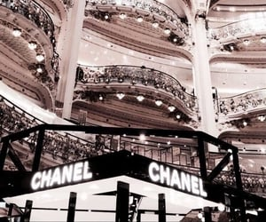 brands, chanel, and fashion image