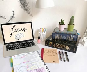 study, study notes, and note taking image