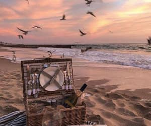 beach, sunset, and picnic image