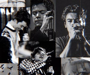 black and white, wallpaper, and Harry Styles image