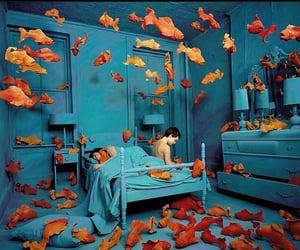 fish, blue, and orange image